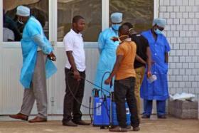 Canada Sends 1000 Ebola Virus Vaccines To Africa